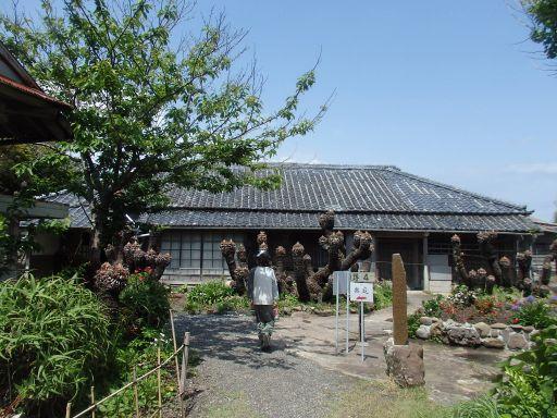 仁右衛門島5.jpg